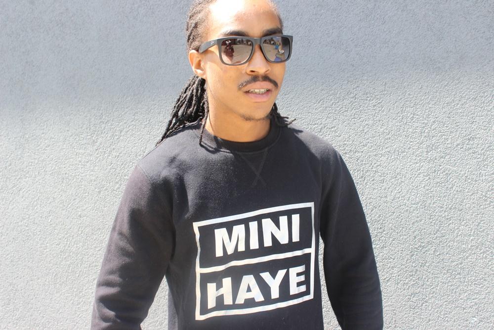 Mini Haye